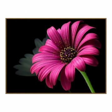 "Алмазная мозаика ""Пурпурный цветок"""